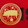 05.02. počinje prosperitetna godina Svinje: