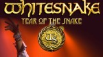 article_big_1360326230whitesnake2013