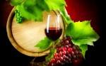 crno_vino