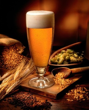 Beer and ingredients