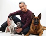 NORTH SHORE ANIMAL LEAGUE AMERICA CESAR MILLAN
