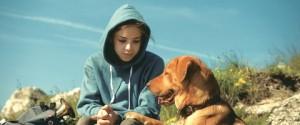 003film_white_dog