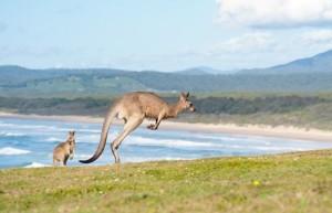 Australia-Australija