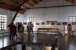 ZPM muzej